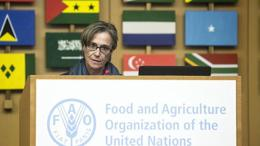 fao food policy 2