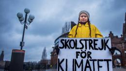 fridays for future 1024x644
